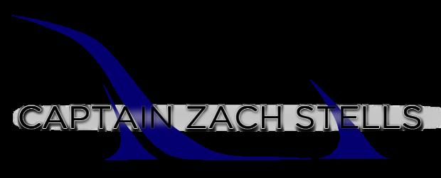 CZS_logo